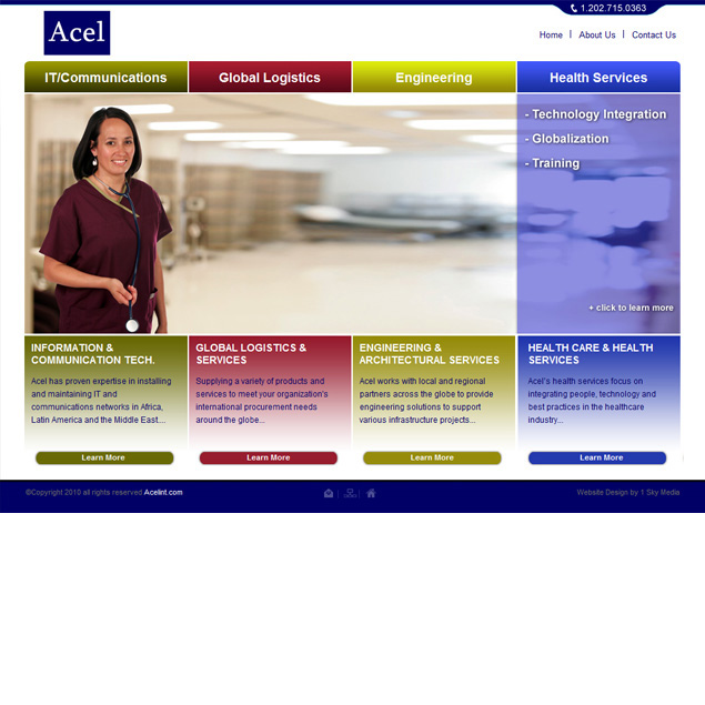 Acel IT Website Design