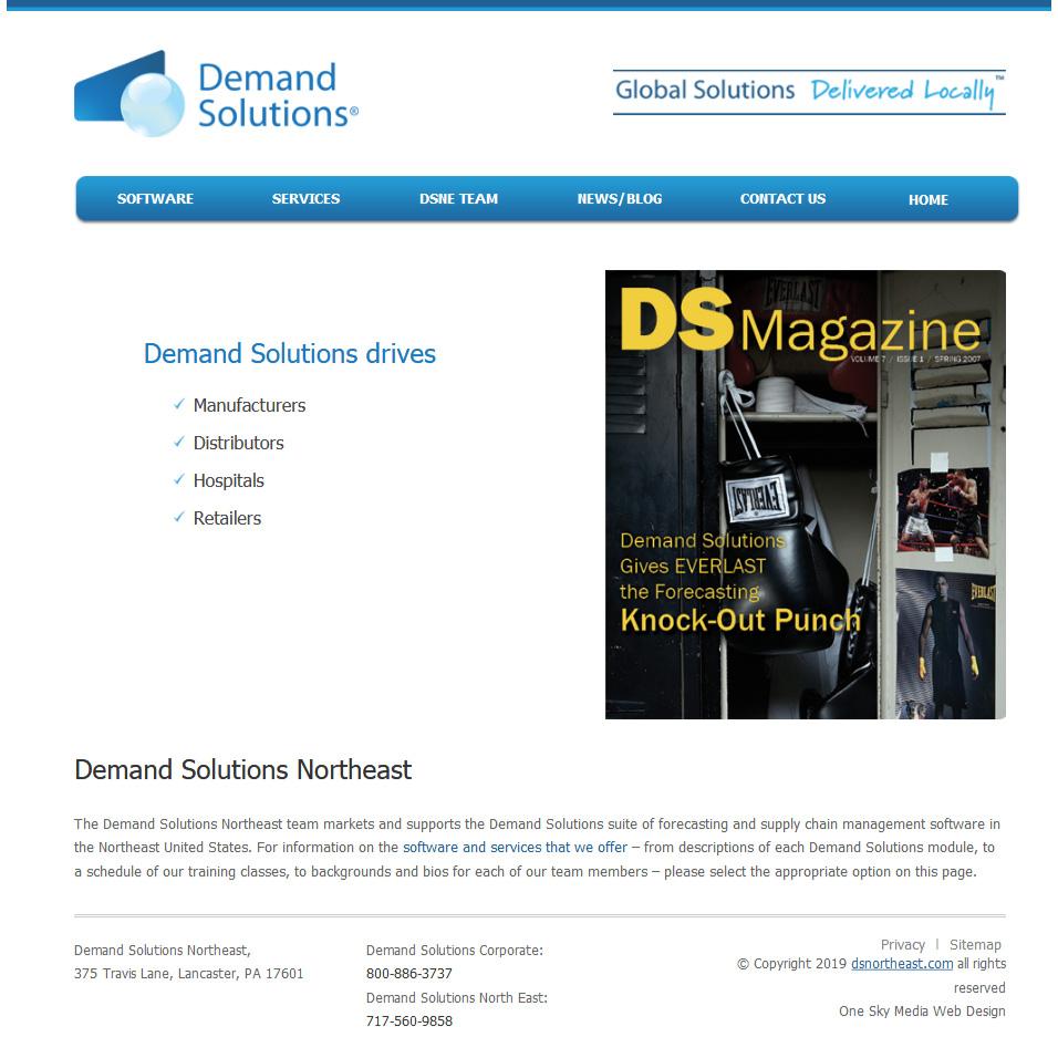 Demand Solutions North East - demand forecasting website design